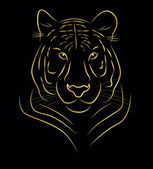 Golden tiger — Stock Vector
