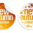 New autumn collection stickers. — Stock Vector