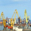 Trading sea port with cranes — Stock fotografie
