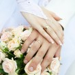 Just married couple hands — Stock Photo #14202142