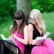 Stock Photo: Student girls reading books.