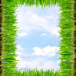 Frame from a green grass — Stockfoto
