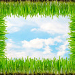 Frame from a green grass — Stock Photo