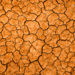 Dry cracked earth — Stock Photo #14203185