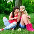 Two beautiful young women friends. — Stock Photo #14205015