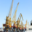 Port with cranes — Stock Photo