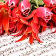 Red tulips with music sheet page — Stock Photo