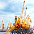 Cranes in port — Foto Stock