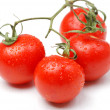 Tomatos — Stock Photo