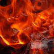 Royalty-Free Stock Photo: Burning fire wood