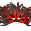 Carnival mask from feathers — Stock Photo