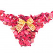 Pink shorts made of petals isolate. — Stock Photo