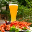 Lobsters and glass of beer — Stockfoto