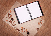 Open notebook with nature elements — Stock Photo
