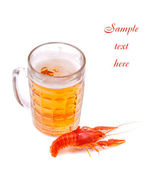 Beer with lobster — Stock Photo