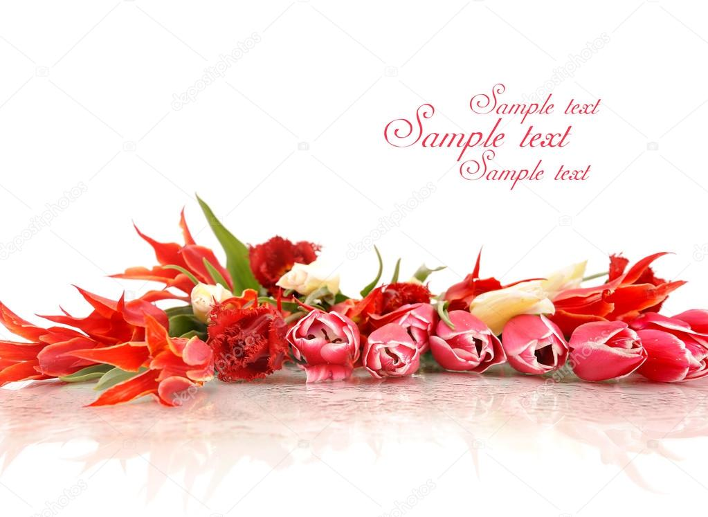 Bouquet of the fresh tulips on white background with plase for text — Stock Photo #14205633