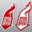 Stok Vektör: Special quick action offer symbols.