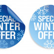 Winter offer stickers. — Stock Vector #14205104