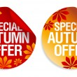 Autumn offer stickers. — Stock Vector #14206381