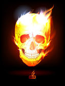 Fiery Human Skull. — Stock Vector