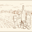 Hand drawn vineyard. - Vettoriali Stock