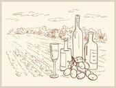 手描きのブドウ園. — ストックベクタ