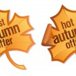 Stock Vector: Best autumn offer stickers.