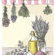 Bindings herbs and olive oil. — Vettoriali Stock