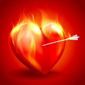 Burning heart with arrow. — Stock Vector