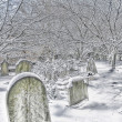 Snow in Churchyard — Stock Photo