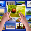 Royalty-Free Stock Photo: Hands choosing photos on virtual desktop