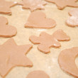 Homemade Gingerbread Cookies With Different Shapes — Stock Photo #16870227