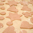 Homemade Gingerbread Cookies With Different Shapes — Stock Photo