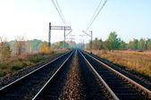 Demiryolu hatları ile — Stok fotoğraf