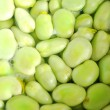 Broad beans in boiling water — Stock Photo