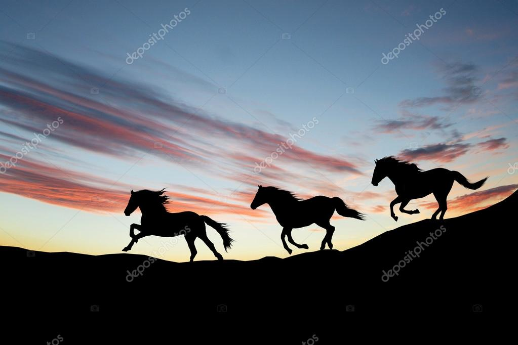Galloping Horse Silhouette Galloping Wild Horses Horse Silhouette Against The Sky Photo by Kasza