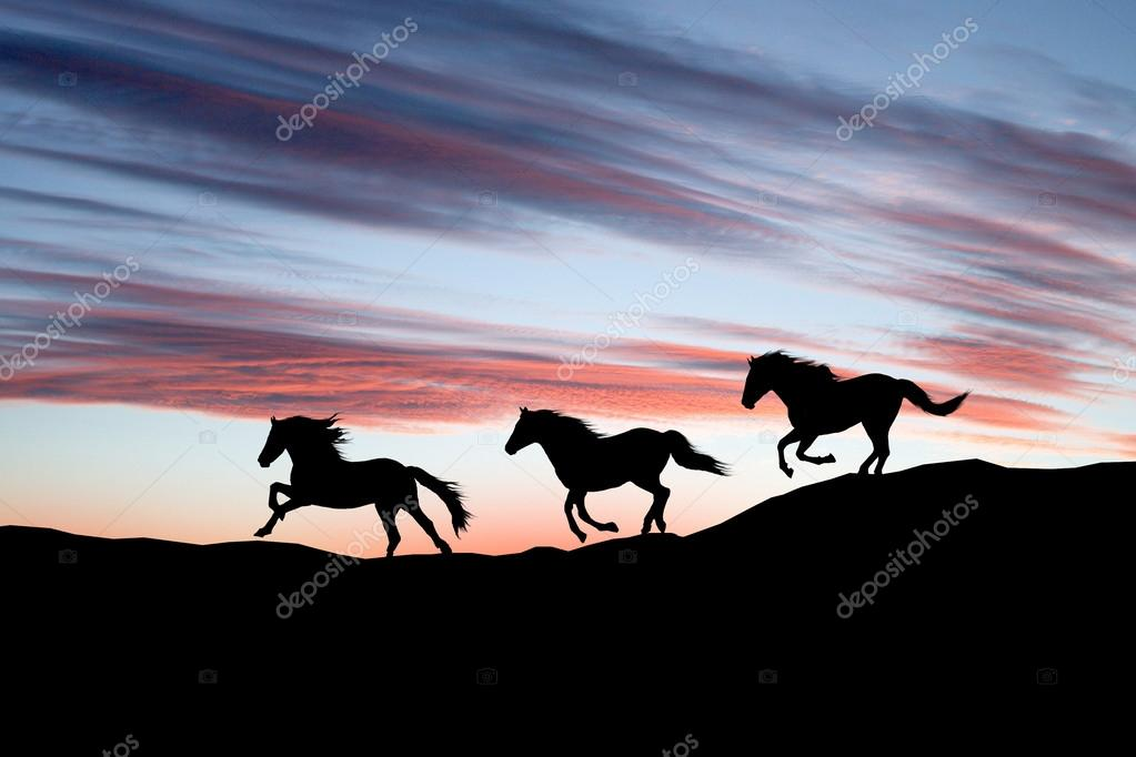 Galloping Horse Silhouette Horse Silhouette Against The