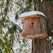 Stock Photo: Bird house. Booth breeding on tree