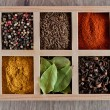 Spices in box: cummin, pepper, laurer, curry, paprika, chili — Stock Photo #43164785