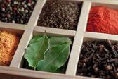 Spices in box: cummin, pepper, laurer, curry, paprika, chili  — Stock Photo