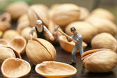 Small people split the pistachios. The concept of cooking. — Stock Photo