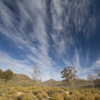 South African landscape with striking clouds. — Stock Photo #14148966