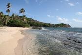 热带加勒比海滩 bequia — 图库照片