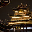 Illuminated buildings of the Old Town in the city center, Nanshi, Shanghai — Stock Photo