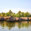 Traditional house boats moored along the banks of the canal in the backwaters near Alleppey, Kerala, India — Stock Photo #37648691
