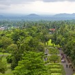 View from the top of Borobudur of lust green forest & extinct volcanoes. — Stock Photo