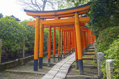 Rows of Torii gates at the Nezu Shrine, Bunkyo, Tokyo, Japan. — Stockfoto