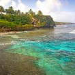 Alofi coastline, Niue Island, South Pacific. — Stock Photo #37902305