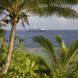 Cruise ship visits Niue Island, South Pacific. — Stock Photo #37902307