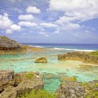 View over Limu Pools towards ocean, Niue Island, South Pacific. — Stock Photo #37902895
